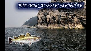 Минтай. Русская Рыбалка 3.99.