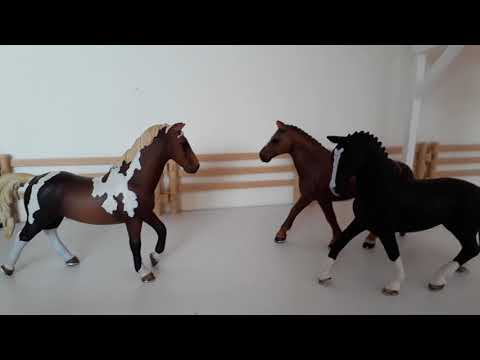 Midnight story-schleich music video (of my real love is)
