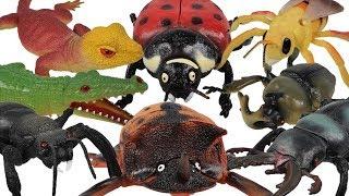 자이언트 정글 파이터 곤충 파충류 악어 개미 도마뱀 사…