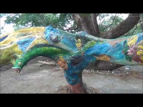 Kochi INDIA Cochin