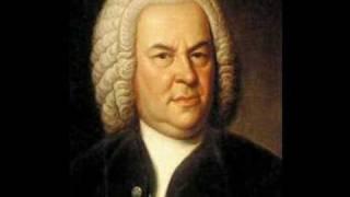 Double Violin Concerto in D minor (2nd movement, Largo) - Johann Sebastian Bach