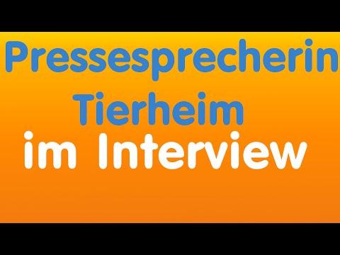 Pressesprecherin Tierheim Stuttgart im Interview   WeTalk - Freies Radio für Stuttgart