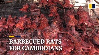Barbecued rats on the menu for Cambodians