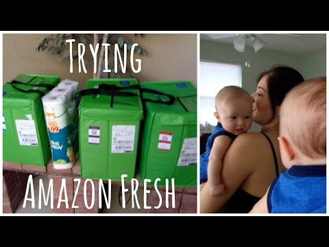 FREE GROCERIES DELIVERED & FAMILY DAY  [VLOG]   totallyblushing