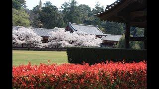 Городские сады в Японии