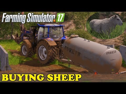 Farming Simulator 17 | The Abandoned Forest | Timelapse | Episode 16 | BUYING SHEEP thumbnail
