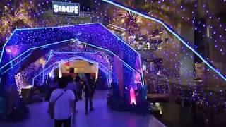 Siam Paragon 睇睇商場外面的聖誕氣氛