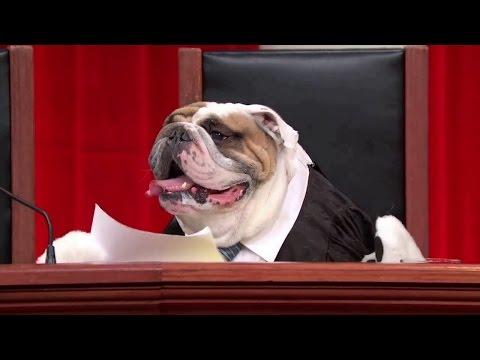 Harris v. Arizona Independent Redistricting Commission: Oral Argument - December 08, 2015