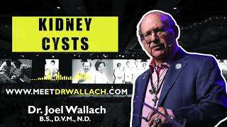 KIDNEY CYSTS - Dr Joel Wallach BS DVM ND 1080p