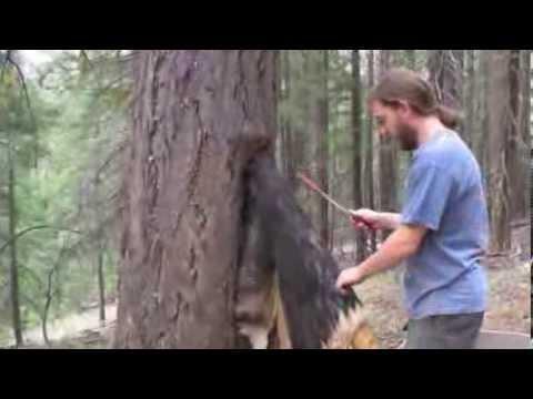 Brain Tanning a Deer Hide - Part 1 of 6