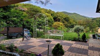 정원아치만들기:; 월동식물들:;바베큐파티:;과실수 저렴…