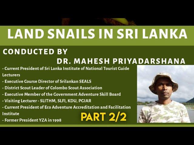 Land Snails in Sri Lanka (10th October 2020) - Part 2/2 (End)