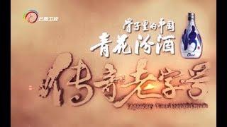 《传奇老字号》第4集 南京同仁堂
