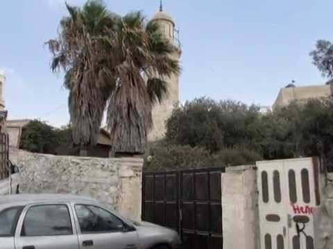 Holy Land tour -   Mount of Olives and Garden of Gethsemane with Zahi Shaked