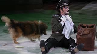 Атмосфера циркового спектакля «Салют Победы!» в Курском цирке