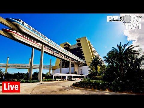 🔴Live: Magic Kingdom Monorail Resort Hopping in 1080p - Walt Disney World - 7-19-19