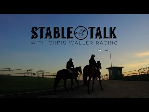 """Stable Talk"" - Weekly Preview - 6th June 2018 - Chris Waller Racing"