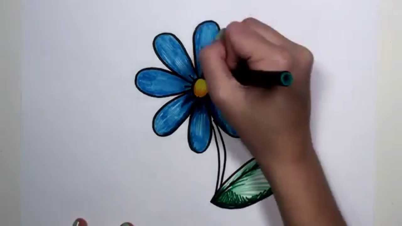 How To Draw Flower Step By Step  Blue Daisy Drawing Lesson Mlt  Youtube