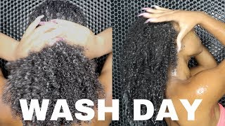 WASH DAY ROUTINE FOR TYPE 4 HAIR FT MIELLE ORGANICS | MAINTAINING HEALTHY MEDIUM LENGTH NATURAL HAIR