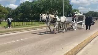 Vanessa Guillen's casket taken by horse-drawn carriage to Chavez High School for public memorial