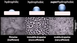 Comparison of condensation on hydrophilic, hydrophobic, and superhydrophobic surfaces
