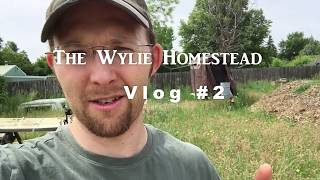 LOOK WHAT WE FOUND!!! [Wylie Homestead VLOG #2]