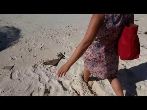 Zanzibar #2018 - Nungwi Beach / The Fishing Mans | Vlog #10