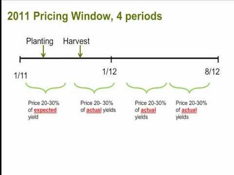 Part 2: Grain Marketing Decisions