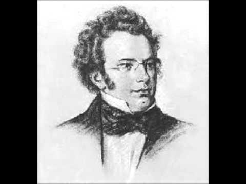 Franz Schubert - Sonata for Piano and Violin, Op. 137, No. 3, Arranged for Orchestra - 4th movement