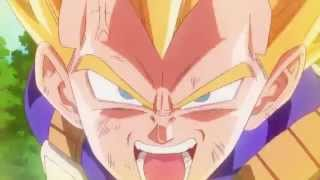 Dragon Ball Z - Echo From The Sky