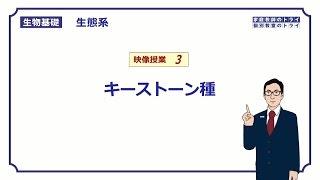 【生物基礎】 生態系3 キーストーン種 (12分)