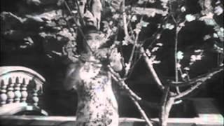 映画 『支那の夜』全編(1940・昭和15年) Nights of China,Full movie