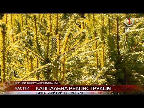 На Тячівщині у високогірній конторі Турбатського лісництва встановили сонячні батареї