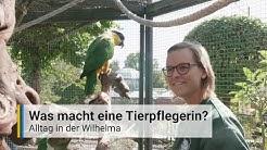 Was macht eine Tierpflegerin? - Alltag in der Wilhelma Stuttgart