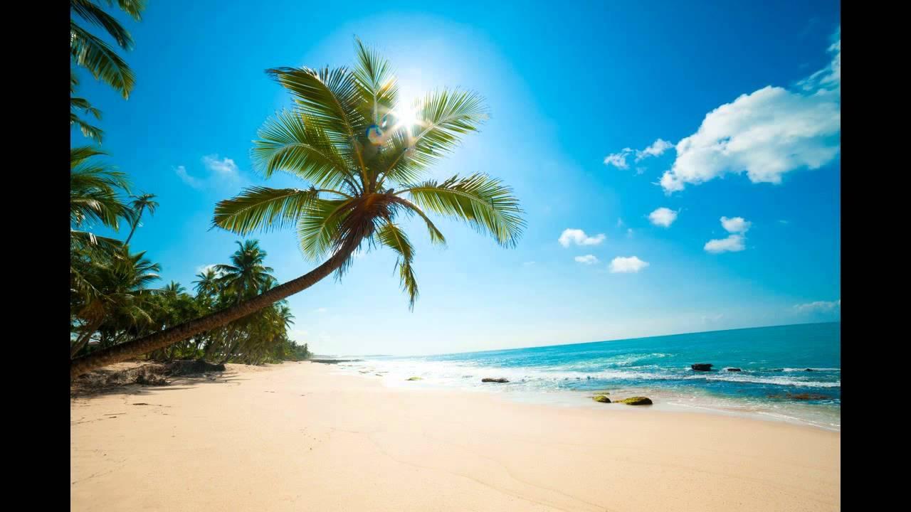 Palm Village Resort Spa