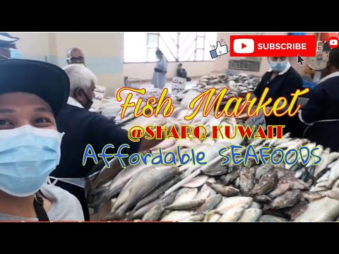 Fish Market In Kuwait/Kuwait Largest Fish Market/Fish Market (Souq Sharq)