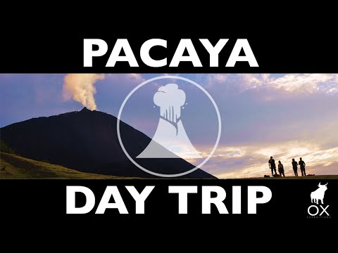 PACAYA VOLCANO: day-trip Active volcano in Guatemala w/ OX Expeditions