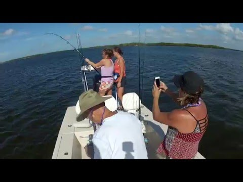 Team Sisters to catch the Big Blacktip Shark !!  12-27-15