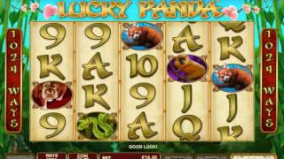 Downloadable Software for Playtech Casino
