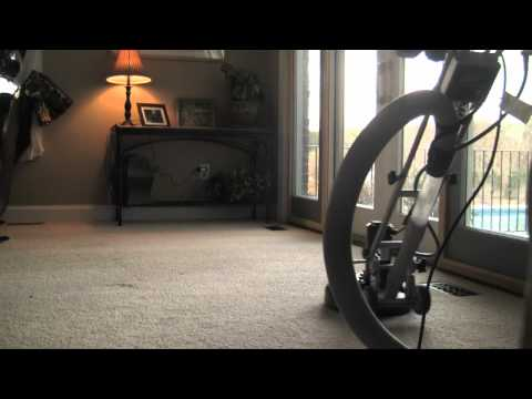 AA Carpet Cleaning in Portland, Oregon