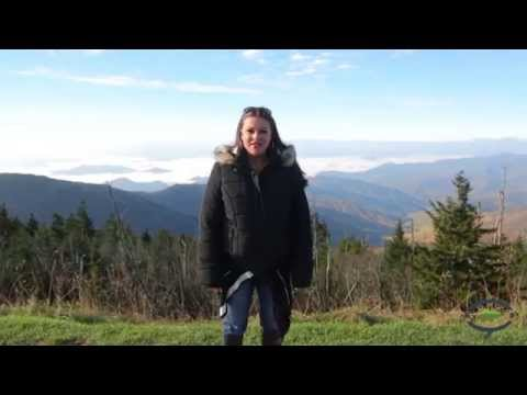 Inside Look at Fall in the Smoky Mountains from Visit My Smokies