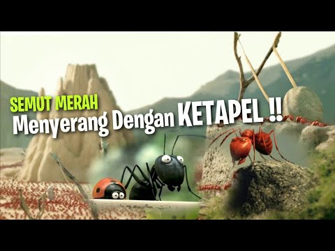 Download Terjadinya Pertempuran Semut Hitam & Semut Merah | Alur Film - Minuscule Valley of the Lost Ants