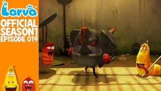 official cocoon 2 - larva season 1 episode 19