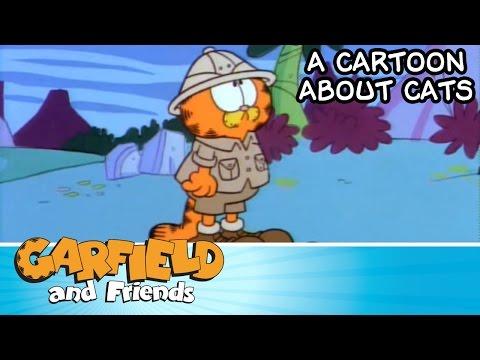 A Cartoon About Cats - Garfield & Friends