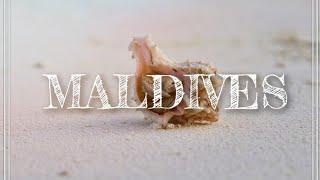 Maldives Travel Video/ Путешествие На Мальдивы