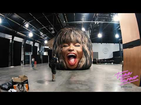 Lisa St. Regis - Giant Tina Turner Head as Art