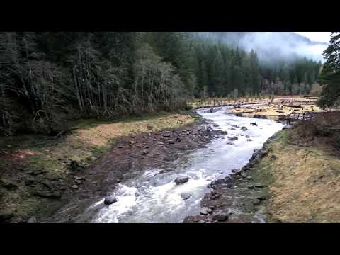 The Hemlock Dam Removal Story - Columbia Basin Restoration