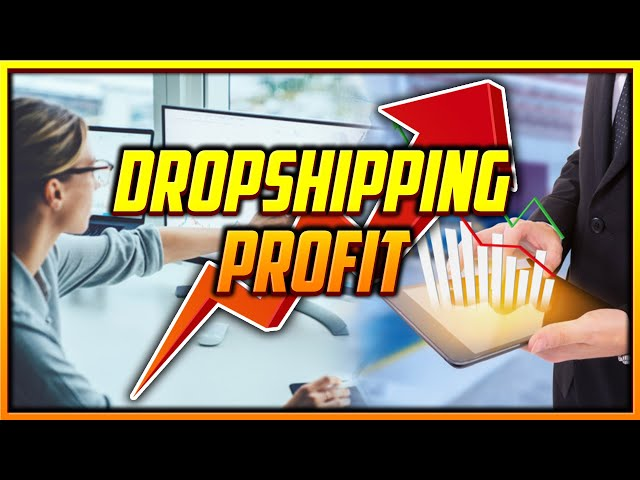 How to Keep Track of Your Dropshipping Profit and Expenses [Free Auto Calculating Spreadsheet]