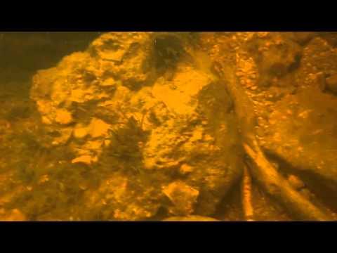 Underwater Loch Ness, Scotland