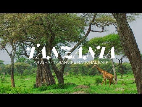 TANZANIA - Arusha - Tarangire National Park